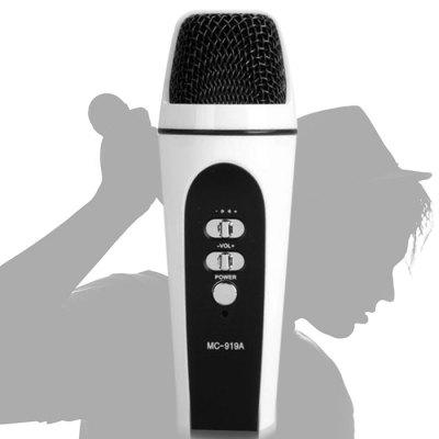 MC - 919A Pocket Professional Microphone