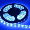YWXLight 5m 300-LED Waterproof Light Strip DC12V - BLUE