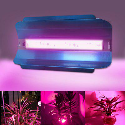 Full Spectrum LED Grow Light for Indoor Plants