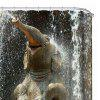 Thickened Waterproof Terylene Shower Curtain for Bathroom Ware - MULTI-A