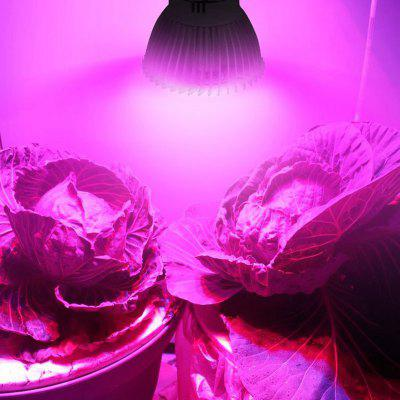 Full Spectrum LED Red Blue Grow Light dla roślin domowych