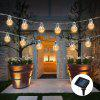 Beautiful LED Solar Light String - WHITE