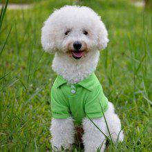 Pet Dog Candy Color Polo Shirt
