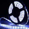 YWXLight Waterproof LED Strip Light for Decoration AC100 - 240V - COOL WHITE