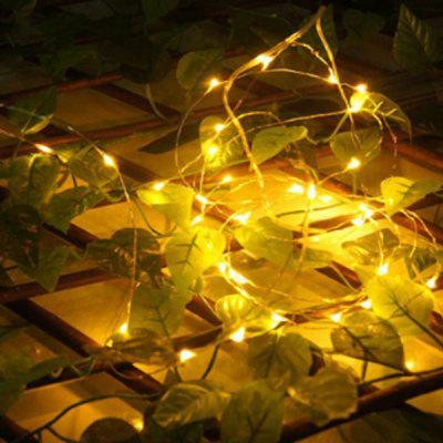 5m 50-LED Copper Wire String Light