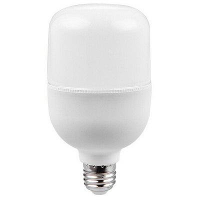 High Brightness E27 30W LED Bulb 1pc