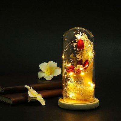BZ738 Glass Cover Lamp with Bionic Dry Flower Micro Landscape