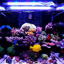 Aquarium Fish Tank Rgb Online Deals Gearbest Com