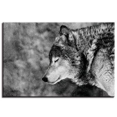 A Lonely Wolf Pattern Single Oil Painting Core