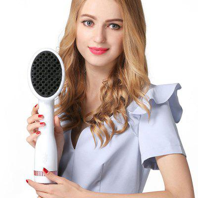 Multifunctional Negative Ion Two-in-one Wet / Dry Electric Hair Dryer Comb
