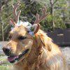 Christmas Decoration Pet Antler Headband - TAN