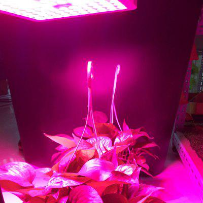 RFC - F300W Creative 300W Plant Growth Light with High-grade ABS Plastic Shell
