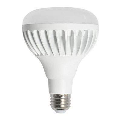 LED 15W BR30 Light Bulb