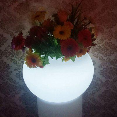 LED Charging Potted Decoration Night Lamp for Home