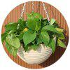 Large Beige Balcony Potted Resin Flower Hanging Orchid Pot With Iron Chain Hook - BEIGE