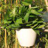 White Large Automatic Water Lazy Flower Pot with Planting Basket Water-absorbing Cotton Rope Hook - WHITE