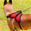 Medium Large Dog Collar Traction Rope Chain - RED