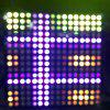 WS2812B 256  Pixels Digital 5050 RGB Dream Color Programmed LED Module Strip - BLACK