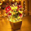 5M 50 LEDS Silver Wire String Lights - WARM WHITE LIGHT