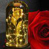 Valentine's Day Gift 24K Rose Gold Foil Glass Cover LED Night Light - GOLD