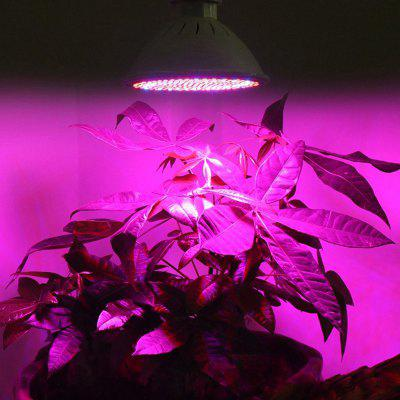 SIGNREEN E27 Full Spectrum LED Grow Light