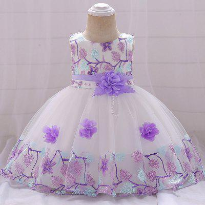 Baby Cute Flower Embroidery Princess Dress