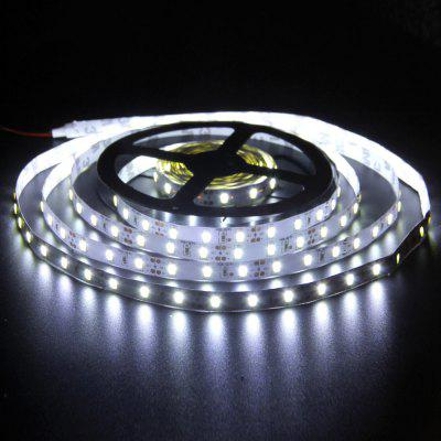 BRELONG LED Light Strip 5050 SMD DC12V 5M 300 kralen