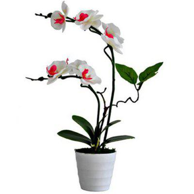 Creative Artificial Flower Phalaenopsis Plant Potted