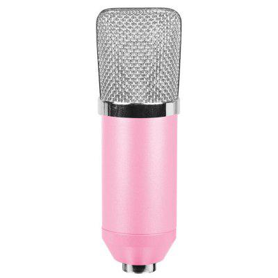 BM700 High Sensitivity Wired Condenser Microphone