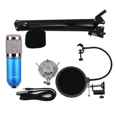 BM800 Gold Ring Version Professional Anchor Karaoke Microphone Bracket Set