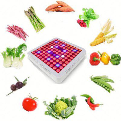300W LED Plant Growth Light Square Panel