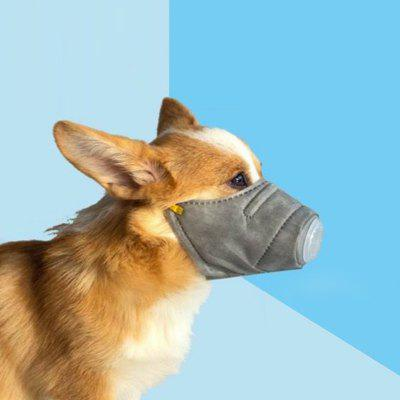 Pet Dog Dustproof Mask 3pcs