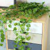 9 Fork Wall Hanging Plant Watermelon Leaf 2pcs - SHAMROCK GREEN