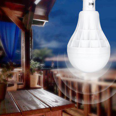 Rechargeable 30W Hand-cranked Bulb Light LED for Outdoor Camping Tent