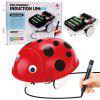 DIY Magic Auto-induction Ladybird Follow Drawn Line Toy - RED