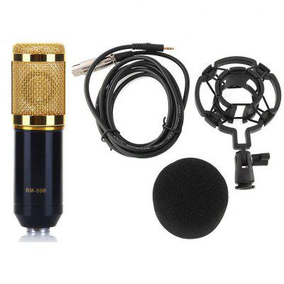 BM-800 Professional Studio Condenser Sound Recording Microphone + Plastic Shock Mount Kit for