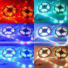 ZDM 24W 5M LED Strip Light IP65 Waterproof with 24-key IR Remote Controller Kit - RGB