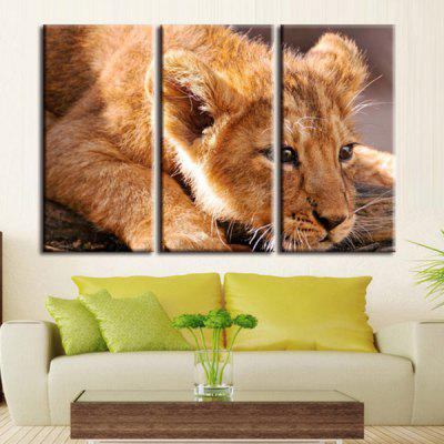 ANMXL-23 High-precision Pictures Printed Decor Canvas Print without Frame