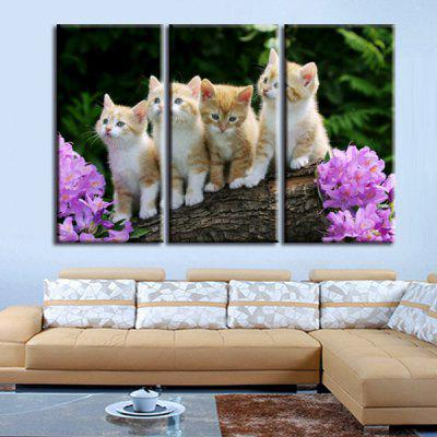ANMXL-21 High-precision Pictures Printed Decor Canvas Print without Frame