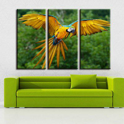 ANMXL-17 High-precision Pictures Printed Decor Canvas zonder Frame