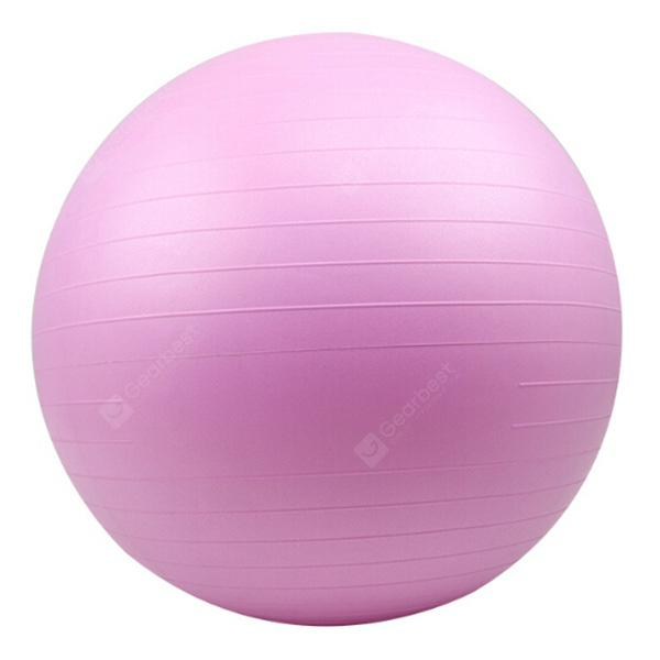 65cm Thickened Yoga Ball Explosion-proof PVC Frosted Fitness Ball Stability Exercise Training Gym Fitball