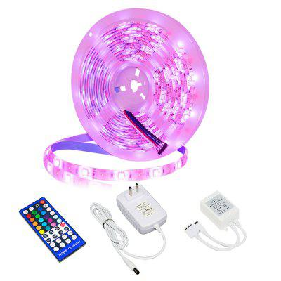 YX-02 5050RGBW 5M 300 LEDs Soft Light Strip IP65 Waterproof 40-key Infrared Controller for Home Party Decoration