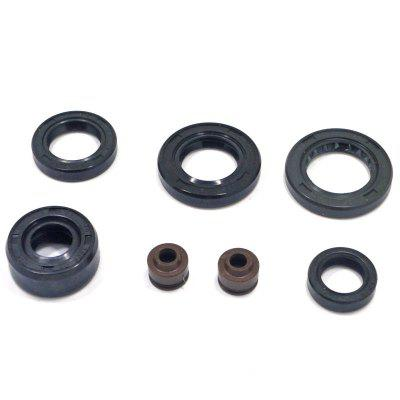 140cc Engine Oil Seal Repair Kit forensic odontology