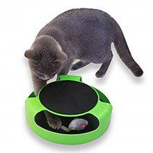 Cat Toy Catch The  Mouse Motion