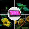 zanflare LED Grow Light - BLACK