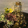 LED Remote Control USB Waterproof Copper Wire Lamp with Battery Box - 3 METERS 30 LIGHT COPPER WIRE LAMP - USB
