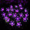 Solar String Light Double Function Lights Waterproof Christmas Holiday Decoration Lamps - 7 METERS OF SOLAR ENERGY 50 HEADS PICK WHITE