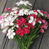 XM1 1 Branch PE Fringed Iris Herb Artificial Flowers - PINK