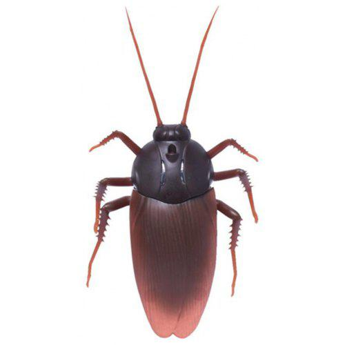 realistic cockroaches