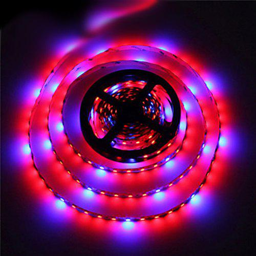 Zdm 5m 70w 5050 Red And Blue Group Led Plant Grow Strip Light Dc12v